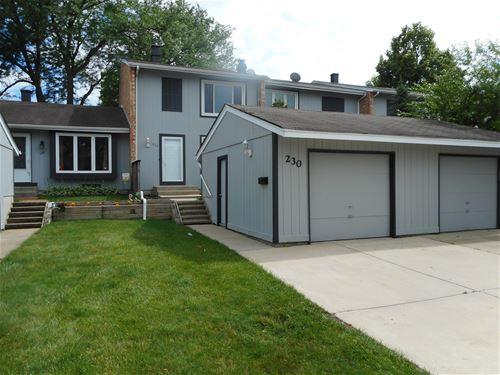230 Oakwood, Bloomingdale, IL 60108