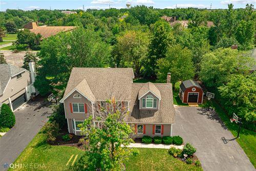 10421 Brookridge Creek, Frankfort, IL 60423