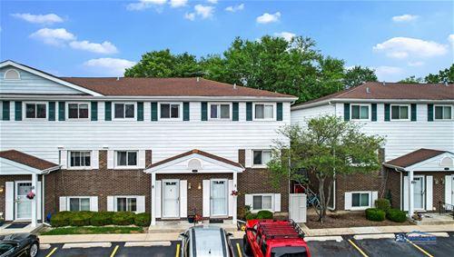 545 W Park Unit E, Libertyville, IL 60048