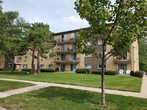 919 N Boxwood Unit 308, Mount Prospect, IL 60056
