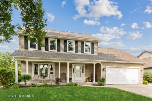 1713 Chestnut Hill, Plainfield, IL 60586