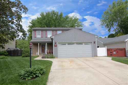462 Glenmore, Roselle, IL 60172