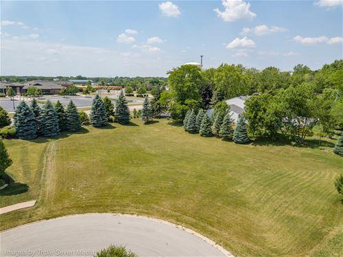16226 Syd Creek, Homer Glen, IL 60491
