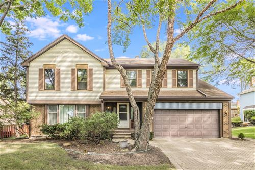 1608 W Plymouth, Arlington Heights, IL 60004