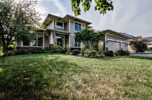 16420 Riverwood, Plainfield, IL 60586
