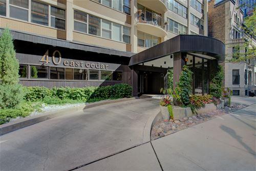 40 E Cedar Unit 12C, Chicago, IL 60611