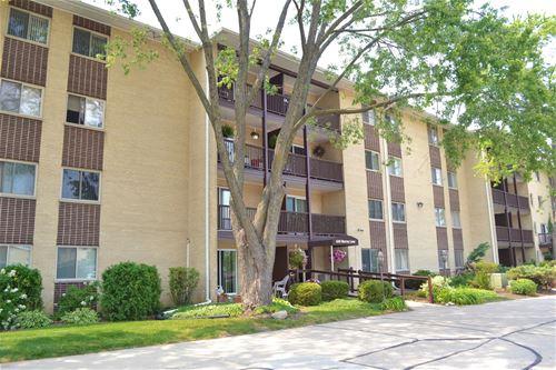 640 Murray Unit 116, Des Plaines, IL 60016