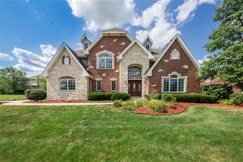 22676 Lilly Pad, Frankfort, IL 60423