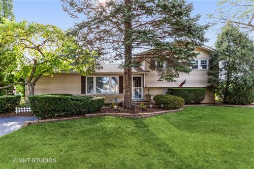 185 Shadywood, Elk Grove Village, IL 60007