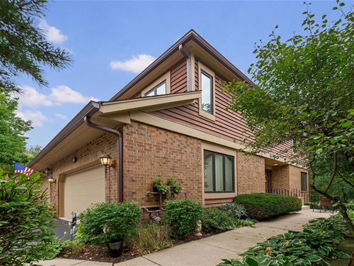 1010 Braemoor, Downers Grove, IL 60515