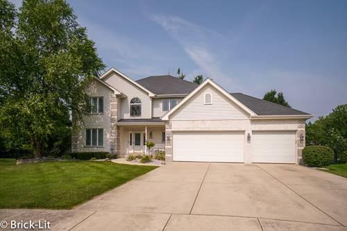 249 Deerfield, New Lenox, IL 60451