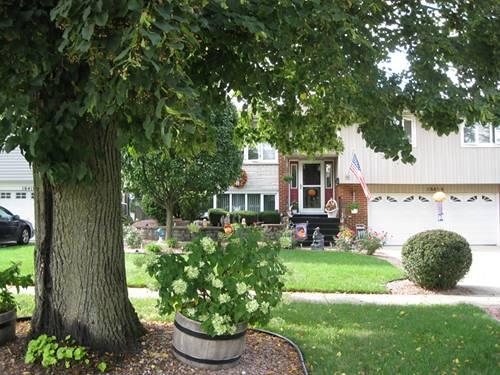 16404 Ridgeland, Tinley Park, IL 60477